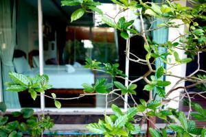 Feung Nakorn Balcony Rooms and Cafe, Hotely  Bangkok - big - 45