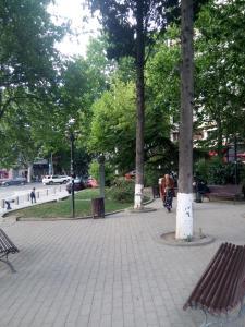 Apartment Nuca, Apartments  Tbilisi City - big - 16