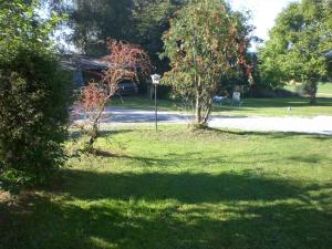 Gasthof zum Sonnenwald, Penziony  Schöfweg - big - 33