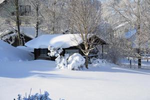 Gasthof zum Sonnenwald, Penziony  Schöfweg - big - 29
