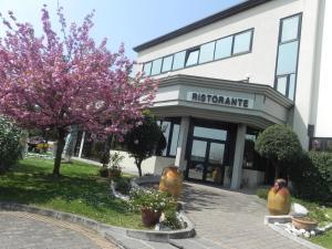Hotel Il Maglio, Hotels  Imola - big - 48