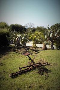 Agriturismo Ninea, Country houses  Ricadi - big - 23