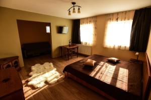 Pensiunea Casa Diaspora, Bed and breakfasts  Târgu Jiu - big - 11