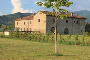 Il Grifone A Cortona Residence, Apartmánové hotely  Cortona - big - 72