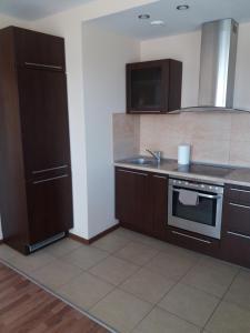 Centro apartamentai - Vingio apartamentai, Apartments  Vilnius - big - 67