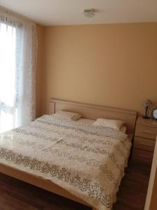 Centro apartamentai - Vingio apartamentai, Apartments  Vilnius - big - 50