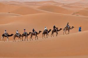 Camel Bivouac Merzouga, Campeggi di lusso  Merzouga - big - 68