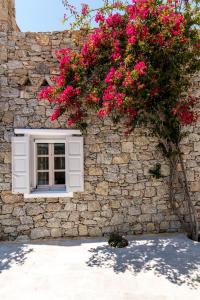 Villa Irini, Ville  Panormos Mykonos - big - 46
