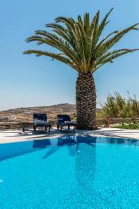 Villa Irini, Ville  Panormos Mykonos - big - 54