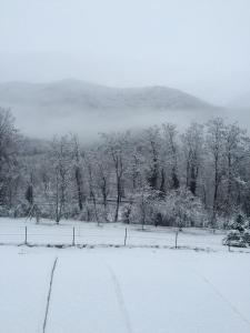 Les 2 Alpes, Отели типа «постель и завтрак»  Puget-Théniers - big - 22