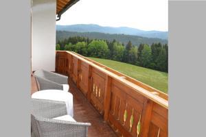 Gästehaus Rachelblick, Ferienwohnungen  Frauenau - big - 17