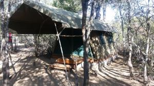 Tente Bushcamp - 3