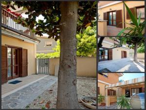 B&B La Casetta, Apartmány  Ladispoli - big - 1