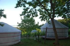 Almond Grove Yurt Hotel, Zelt-Lodges  Ábrahámhegy - big - 20