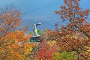 Breathtaking Views Holiday home, Prázdninové domy  Sevierville - big - 7