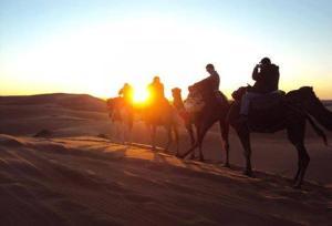 Camel Bivouac Merzouga, Campeggi di lusso  Merzouga - big - 36