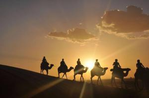 Camel Bivouac Merzouga, Campeggi di lusso  Merzouga - big - 41