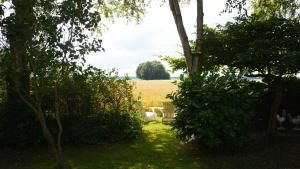 B&B Droom 44, Bed & Breakfasts  Buinerveen - big - 24