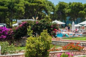 Keri Village & Spa by Zante Plaza (Adults Only), Hotels  Keríon - big - 30