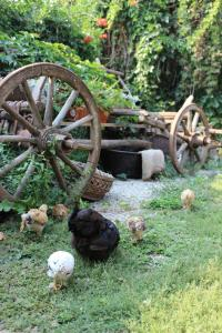Rural Tourism Family Ravlic