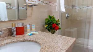 Dorado Eagle Beach Hotel, Апартаменты  Пальм-Бич - big - 23