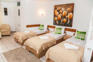 Villa Chesa, Hotels  Corunca - big - 4