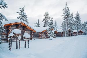 Kakslauttanen Arctic Resort (31 of 53)