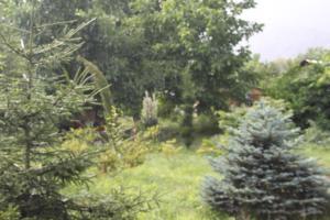 Bio Yard, Penzióny  Lagodekhi - big - 76