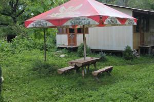 Bio Yard, Penzióny  Lagodekhi - big - 71