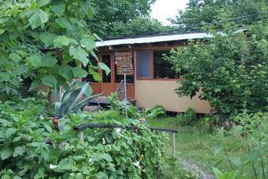 Bio Yard, Penzióny  Lagodekhi - big - 68
