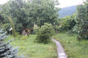 Bio Yard, Penzióny  Lagodekhi - big - 57