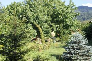 Bio Yard, Penzióny  Lagodekhi - big - 52
