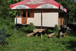 Bio Yard, Penzióny  Lagodekhi - big - 11