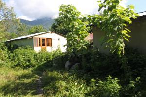 Bio Yard, Penzióny  Lagodekhi - big - 44