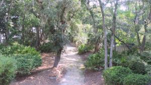 Treetops, Villák  Hilton Head Island - big - 14
