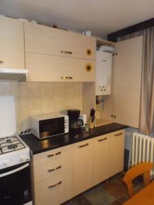 Ily Apartament, Apartments  Iaşi - big - 11