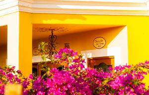 El Encanto Inn & Suites, Hotely  San José del Cabo - big - 27