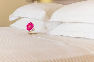Palms and Spas, Corfu Boutique Apartments (30 of 64)