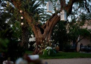 Masseria Asciano, Farm stays  Ostuni - big - 65