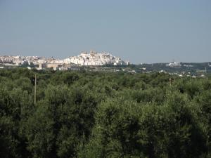 Masseria Asciano, Farm stays  Ostuni - big - 81