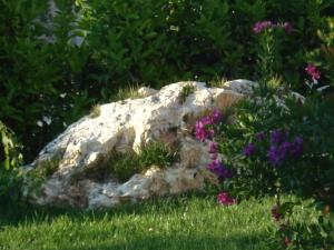 Masseria Asciano, Farm stays  Ostuni - big - 78
