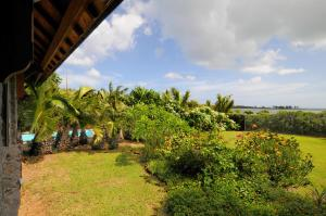 Villa Serena, Villas  Le Morne - big - 2