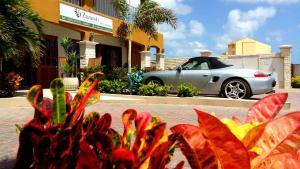 Dorado Eagle Beach Hotel, Апартаменты  Пальм-Бич - big - 14