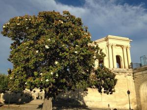 La Merci, Chambres d'hôtes, Bed & Breakfast  Montpellier - big - 53