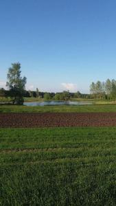 Gospodarstwo Agroturystyczne Zakątek.  Foto 20