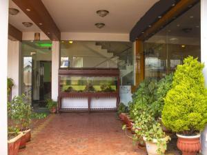 OYO 3217 Kurinji Residency, Отели  Утакаманд - big - 8