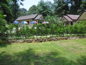 Baansanook Bungalows & Pool, Penziony – hostince  Ko Chang - big - 92
