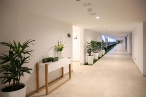 Santa Mónica Suites Hotel (12 of 90)