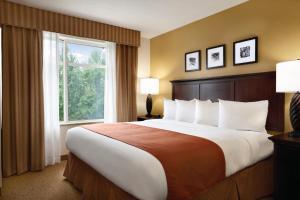Pokój typu Standard z łóżkiem typu king-size