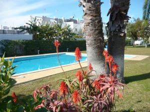 Praia da Lota Resort – Hotel (Ex- turoasis), Hotely  Manta Rota - big - 32
